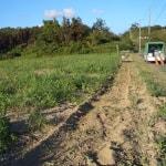ソバ栽培園の耕起始まる!
